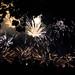 FireworksInParis-4691