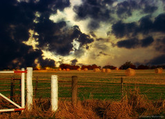 Cielos y campos de la pampa Argentina 2/ Skies and fields from Argentina\'s pampa 2