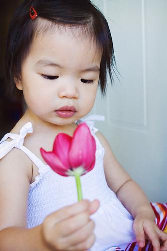 Examining A Flower