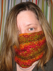 snowbird cowl finished on