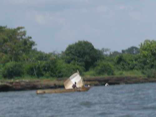 Murchinson Bay