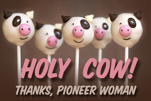 cake pops pictures. Cow Cake Pops