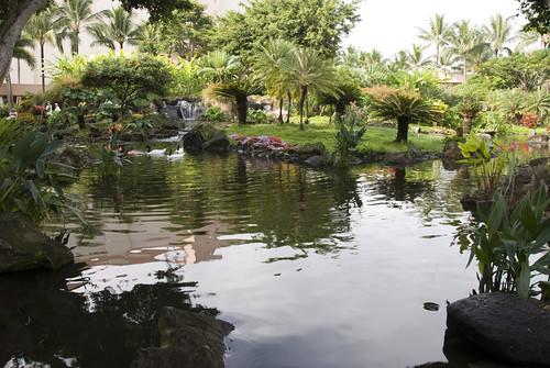 Hawaii-October-2008381