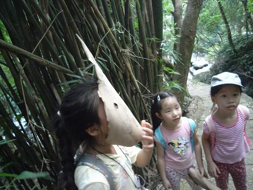 你拍攝的 36竹葉面具。