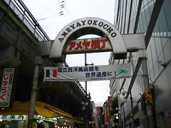 日光輕井澤東京5日 313
