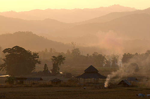 Rice fields outside Pai at sunset, Mae Hong Son, northern Thailand