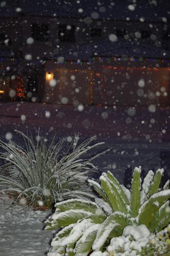 Vegas Snowfall