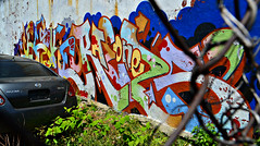 Cecs x Raels (Now It's Real!) Tags: new york city nyc ny brooklyn graffiti graf graff piece bk cecs raels bkay cecske cecsism