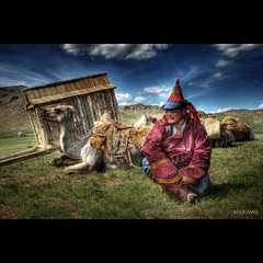 NOMADIC (ARIUKAMO) Tags: portrait people man photo traditional mongolia camel nomad form hdr mongolian nomadic deel mygearandme mygearandmepremium mygearandmesilver mygearandmegold mygearandmeplatinum mygearandmediamond ariukamo flickrstruereflection1 masterclasselite