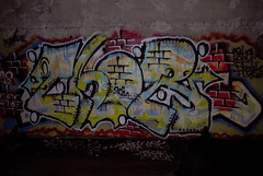 Thor (.Peace.Wall.Park.) Tags: graffiti bay ds east area thor tfn
