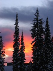 Big White Sunset (Catherine Ryan) Tags: trees sunset snow canada tree nature pine 2007 bigwhite ih damncool bymum amazingamateur