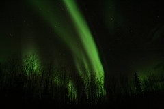 Northern Lights_0253