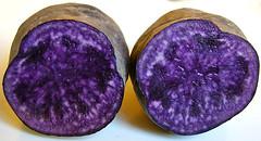 patata violeta por encantadisimo