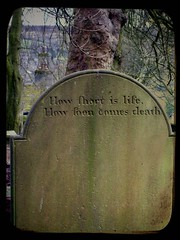 comforting thoughts... (annette62) Tags: grave yorkshire philosophy gravestone epitaph haworth