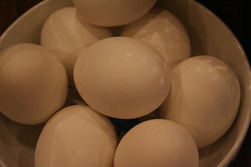 Boiled Eggs
