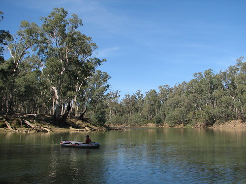 Murray River 013