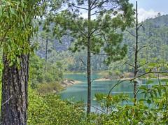 TZISCAO hdr (rohaca) Tags: lake forest mexico lakes lac mexique chiapas hdr mexiko montebello tziscao montane roberthall rohaca robertohallcapek