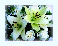 a bouquet for all... (juntos ( MOSTLY OFF)) Tags: flowers friends white all away explore bouquet vernissage beautifull oa interestingness332 i500 goldengallery mywinners visiongroup empyrianflowers theunforgettablepictures macroflowerlovers imaginepoetry theunfortettablepictures kindsofbeauty themodernimpressionists michelangelosbox raregemsdoublefaved hugshugshugshugs sensationalcreationofexcellence mandalaoflight thedantecircle richardsfloraefauna 3msroyalflowers 4mmphotographicdream 24realnature