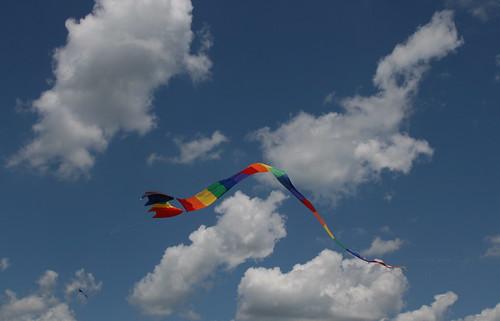 last kite