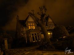 Mistery House (Giuseppe Sortino) Tags: windows brown house tree scotland casa scary olympus albero inverness scozia terrore a3b giuseppesortino sortinogiuseppe
