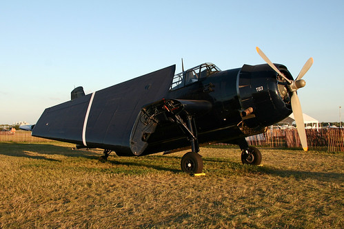Warbird picture - TBM-3 Avenger