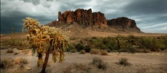 Hanging Superstitions (fangars) Tags: arizona cactus panorama mountains stitch wilderness superstition apachejunction hugin digikam fangars wwwgimporg
