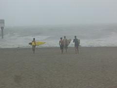 Hardcore Surfers