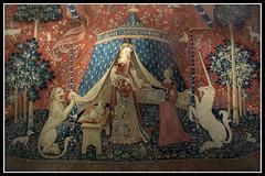 Muse National du Moyen Age-Thermes de Cluny (Max_Car) Tags: statue museo medioevo parigi musenationaldumoyenagethermesdecluny ladamealalicorne