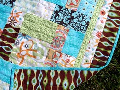 cat quilt back and border