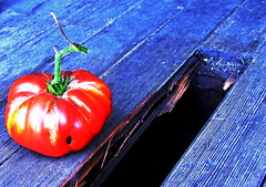 +/- (lightsink) Tags: broken garden tomato porch ripe snohomishcounty heirloomtomato