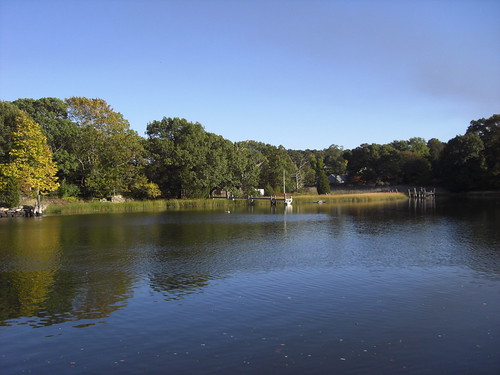 N Kingstown a pond