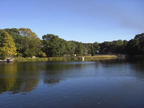N Kingstown a pond