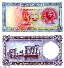 1 Pound - Date Of Issue; May  12, 1952 (Tulipe Noire) Tags: africa one 1 egypt middleeast cairo 1950s egyptian pound 1952 banknote