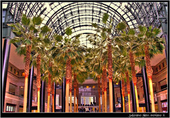 WTC, Ground Zero, World Financial Center, Winter Garden (j glenn montano 3) Tags: world park new york 2001 city winter garden manhattan glenn attack battery terrorist ground center 11 september wtc trade financial zero montano justiniano colourartaward