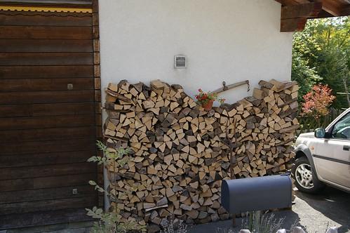 存木頭準備過冬?