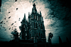 Catedral @ San Miguel de Allende (edgarator) Tags: trees sky bw sun white black tree verde bird byn blanco sol church miguel yellow azul clouds fence de arbol town san rboles teal magic negro iglesia palm bn barda amarillo ave cielo nubes guanajuato vieta vignette palmera pueblos pjaro allende mgicos 5photosaday flickrsbest vieteo vignnette
