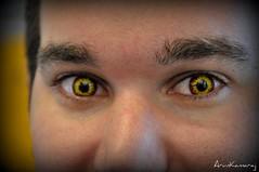 eye halloween scary contactlens