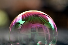On The Bubble (~Kerry Murphy) Tags: house color reflection umbrella rainbow shine play pop bubble boychild hbw
