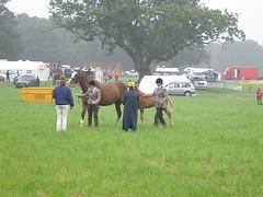 arran show 2008 002