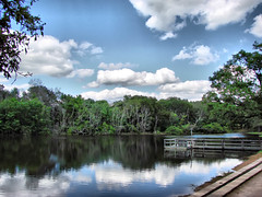 (micky mb) Tags: trees sky lake clouds reflections pier jetty springtime thelodge mickymb ivebeentagged