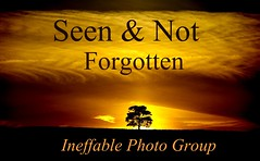 Ineffable Photo Group