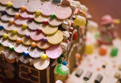 Necco Roof (MissMae) Tags: christmas roof house bread ginger candy gingerbread gingerbreadhouse necco gumdrops savagephotography