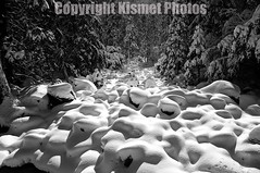 Marshmallows (Kismet Photos) Tags: winter blackandwhite snow frozen rocks stream marshmallows yosemite