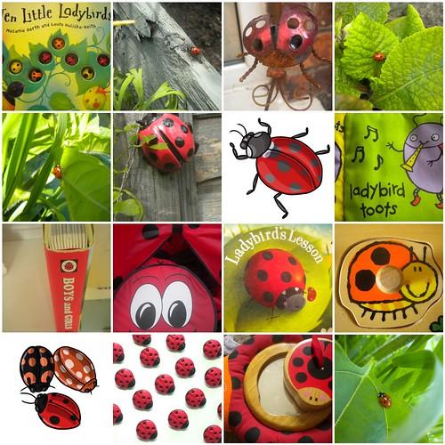 Ladybird mosaic
