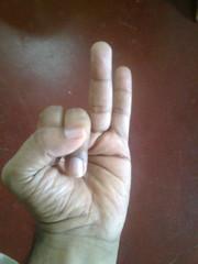 Vaata Naasaka Mudra left hand