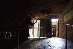 Wookey Hole #11
