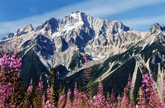 plinth (storm light) Tags: mountain bc volcanic fireweed coastmountains salalcreek plinthpeak upperlillooet