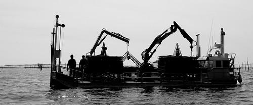 Travailleurs de la mer