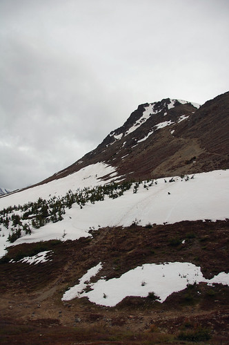 Flattop Mountain I