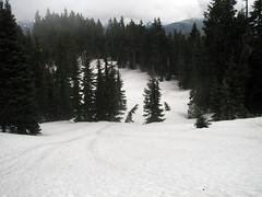 still-lots-of-snow
